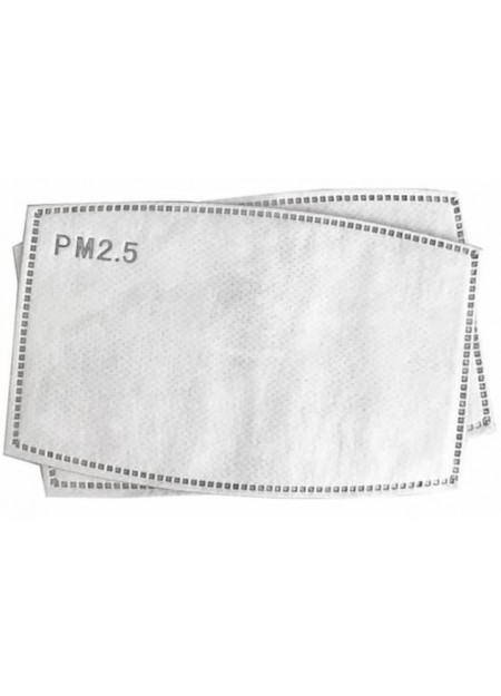 PM2.5 Replaceable Filters for Face Mask (10 Pcs)